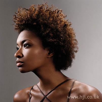 2006-afro-curls